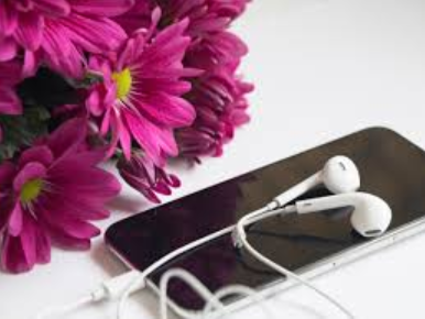 Phone Headphones Flowers Are You Listening