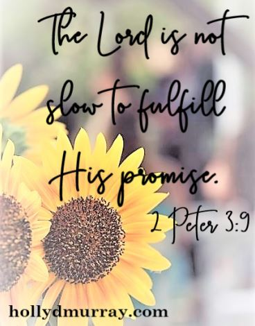 Promises The Lord is not slow to fulfill His promise.